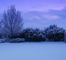 Morning glow...first snow series by goddessteri211