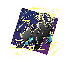 Pokemon - Luxray Photographic Print