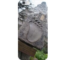 Disneyland Matterhorn iPhone Case/Skin