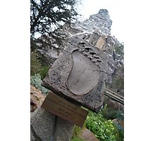 Disneyland Matterhorn Photographic Print