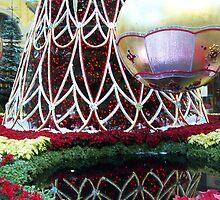 decoration reflection by Mardra