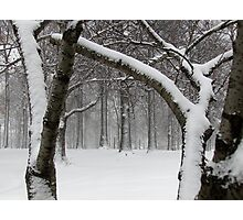 Snowy day in New York City  Photographic Print