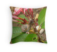 Snail on Frangipani Throw Pillow