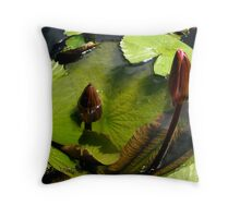Waterlillies and Dragonfly Throw Pillow