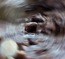 Radial Blur by Laurie Puglia