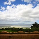 Ngorongoro Crater by Nickolay Stanev
