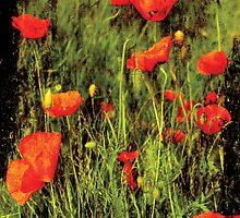 Showy flowers by Guy Jean Genevier