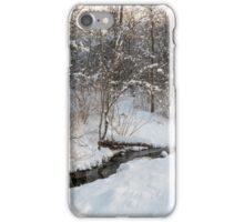 Snowy Brook iPhone Case/Skin