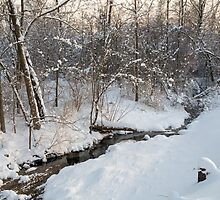 Snowy Brook by Kenneth Keifer