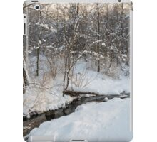 Snowy Brook iPad Case/Skin