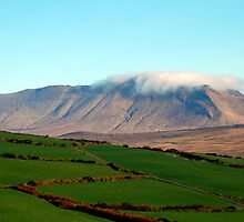 Low Winter Sun on the Mountain by Pat Herlihy