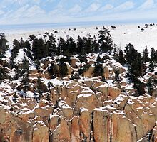 On the Rocks by Jody Johnson