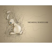 Sad Bunny Photographic Print
