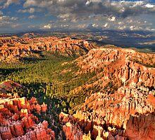 Bryce Canyon, Utah by Paul J. Owen