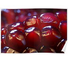 Pomegranate cells Poster