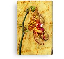 Vintage Orchid Canvas Print