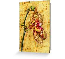 Vintage Orchid Greeting Card
