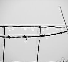 Icy barbed wire by carpenter777