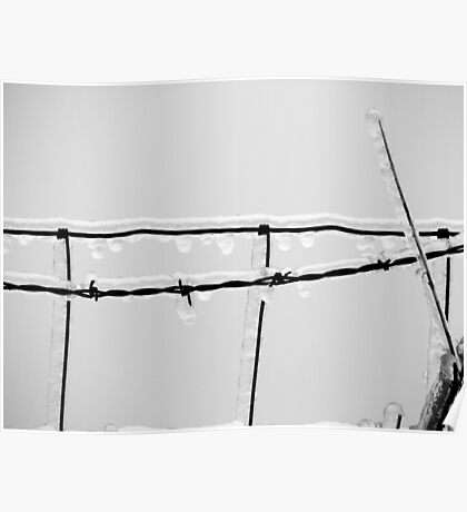 Icy barbed wire Poster