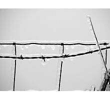 Icy barbed wire Photographic Print