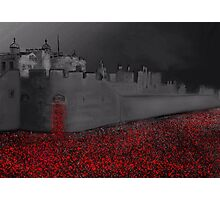Tower of London Poppy Rememberance  Photographic Print
