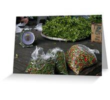 corrianda and green chilies-sleeping on the job Greeting Card