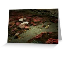 Art Under The Sea Greeting Card