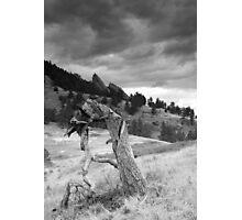 Mesa Trail Boulder, Colorado Photographic Print