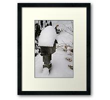 snowed in Framed Print