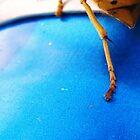 Bee by DeannaLyn