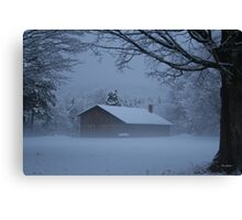 Morning Mist in the snow Canvas Print