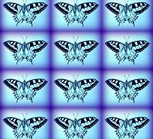 moths in blue by cathyjacobs