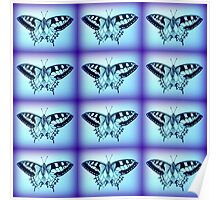 moths in blue Poster