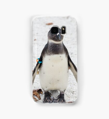 African penguin (Black-footed Penguin) Samsung Galaxy Case/Skin