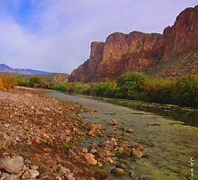 Canyon River View by Chelsea Brewer