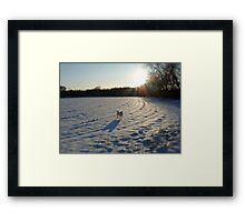 Streaming Sunlight Strikes Snow Aglowing Afternoon Light Framed Print