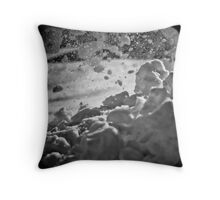 Winter Worry Throw Pillow
