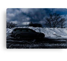 Hide Out from the white out Canvas Print