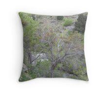 Creekside Mahogany Throw Pillow