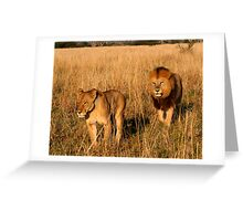 Lioness & Male Lion in the Marsh Greeting Card