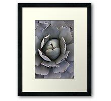 cactus 2 Framed Print