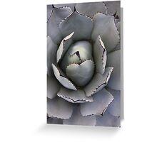 cactus 2 Greeting Card