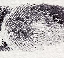 Fingerprint by franceslewis