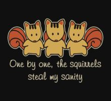 The squirrels steal my sanity Kids Tee