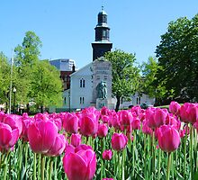 Halifax Spring fun by Kingo