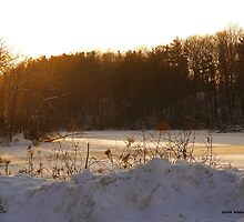 Frozen Lake Eastman by BillK