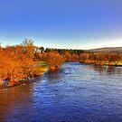 River Tay at Aberfeldy by Tom Gomez