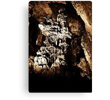 grutas de garcia 7 Canvas Print
