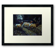 """Forest Royalty"" Framed Print"