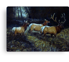 """Forest Royalty"" Canvas Print"